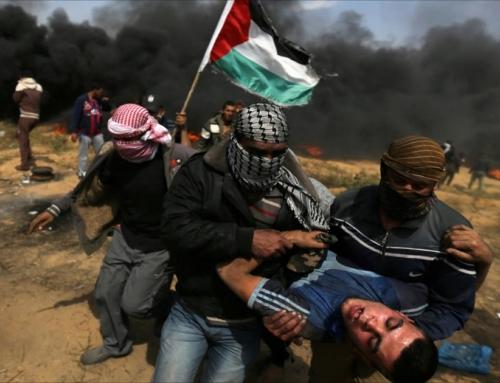 Acción por Palestina no Día da Patria Galega